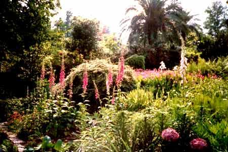 Blumen, Palmen, exotische Pflanzen soweit das Auge auf den Brissago-Inseln reicht