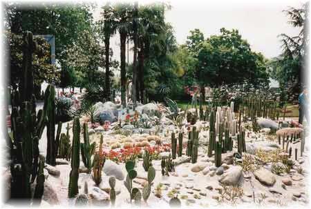 Blumen-Ausstellung KAKTEEN-GARTEN in Locarno