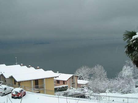 Pino im Winter -  es gibt auch freundlichere Tage als diesen