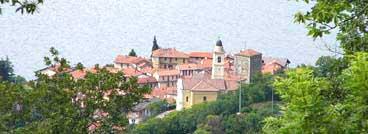 Pino Lago Maggiore