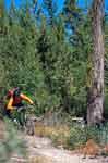 Mountainbiking Lago Maggiore
