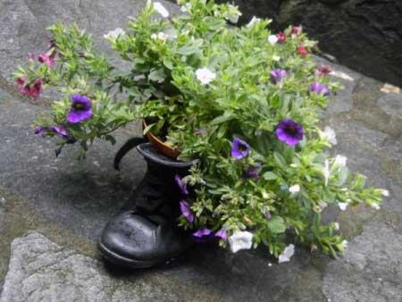 Blumen Schuh